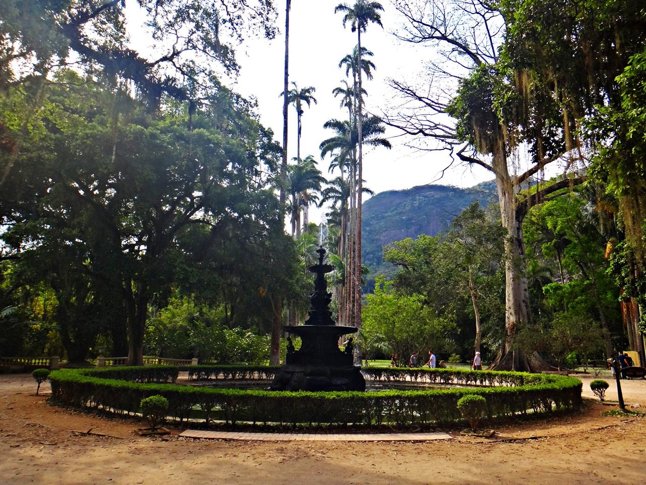 Jardim Botanico Rio de Janeiro 1